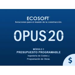 Opus 2020 - Presupuesto...